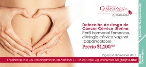 Hospital Cardiológica Aguascalientes_3